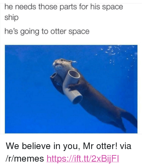 "Memes, Space, and Otter: he needs those parts for his space  ship  he's going to otter space <p>We believe in you, Mr otter! via /r/memes <a href=""https://ift.tt/2xBijFI"">https://ift.tt/2xBijFI</a></p>"