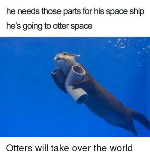 Otters: he needs those parts for his space ship  he's going to otter space Otters will take over the world