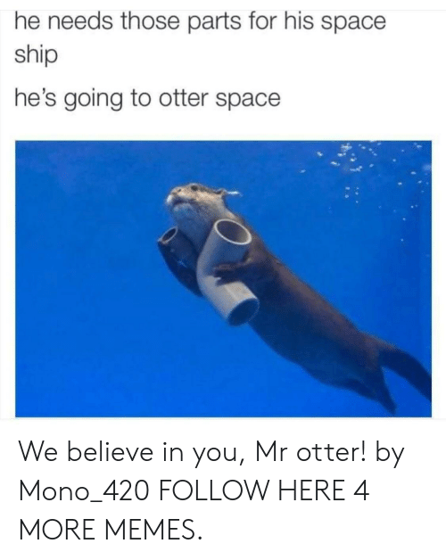 Otter Space: he needs those parts for his space  ship  he's going to otter space We believe in you, Mr otter! by Mono_420 FOLLOW HERE 4 MORE MEMES.