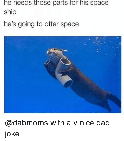 Otter Space: he needs those parts for his space  ship  he's going to otter space @dabmoms with a v nice dad joke