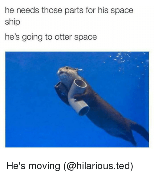 Otter Space: he needs those parts for his space  ship  he's going to otter space He's moving (@hilarious.ted)