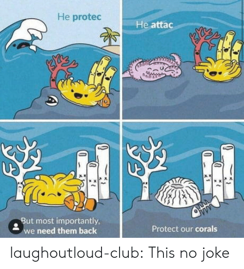 no joke: He protec  He attac  . But most importantly  e need them back  Protect our corals laughoutloud-club:  This no joke