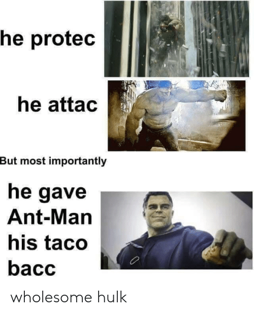 ant man: he protec  he attac  But most importantly  he gave  Ant-Man  his taco  bacc wholesome hulk