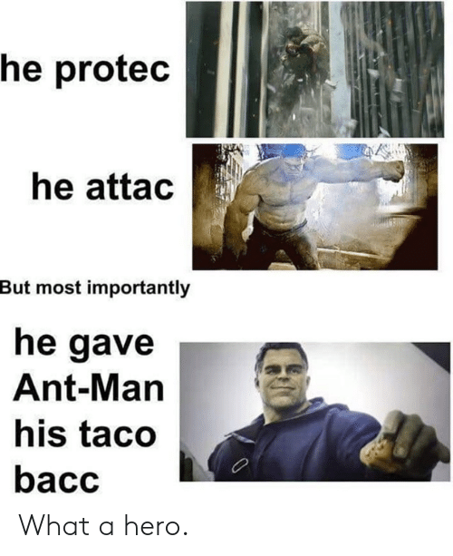 ant man: he protec  he attac  But most importantly  he gave  Ant-Man  his taco  bacc What a hero.