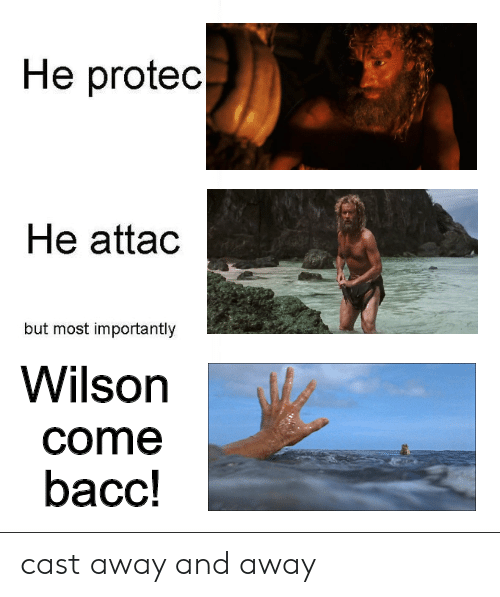 Cast Away: He protec  He attac  but most importantly  Wilson  come  bacc! cast away and away