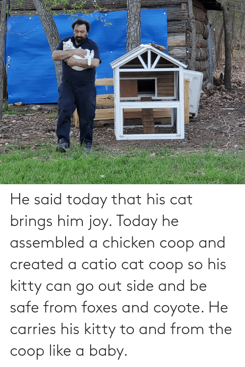 foxes: He said today that his cat brings him joy. Today he assembled a chicken coop and created a catio cat coop so his kitty can go out side and be safe from foxes and coyote. He carries his kitty to and from the coop like a baby.