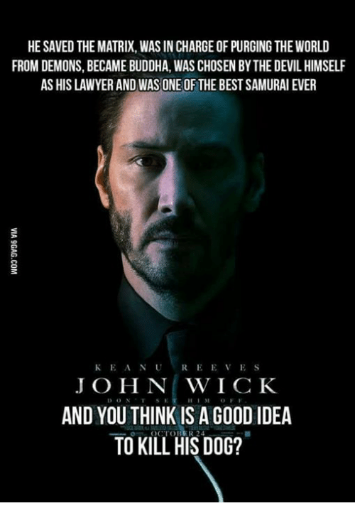 dogging: HE SAVED THE MATRIX, WAS IN CHARGE OF PURGING THE WORLD  FROM DEMONS, BECAME BUDDHA, WAS CHOSEN BY THE DEVIL HIMSELF  AS HIS LAWYER AND WAS ONE OF THE BEST SAMURAI EVER  KEANUREEVES  J O H N WICK  AND YOU THINK IS A GO0D IDEA  TO KILL HIS DOG?