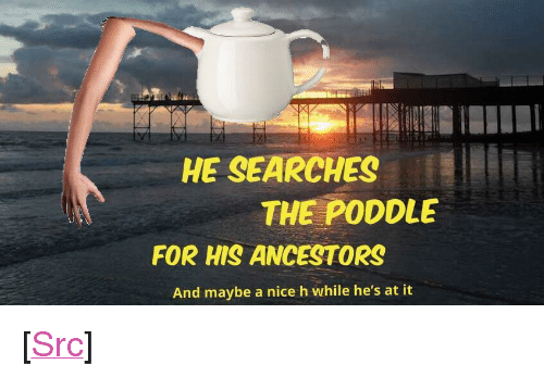 """Meme, Reddit, and Nice: HE SEARCHES  THE PODDLE  FOR HIS ANCESTORS  And maybe a nice h while he's at it <p>[<a href=""""https://www.reddit.com/r/surrealmemes/comments/7gng5l/my_first_whakc_at_making_a_surreal_meme_of_my_own/"""">Src</a>]</p>"""