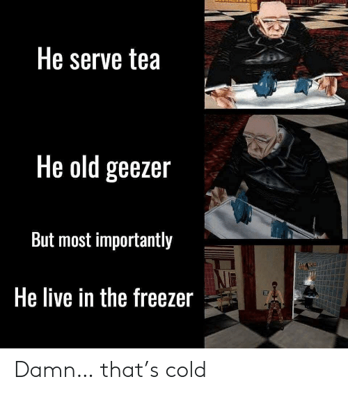 geezer: He serve tea  He old geezer  But most importantly  He live in the freezer Damn… that's cold