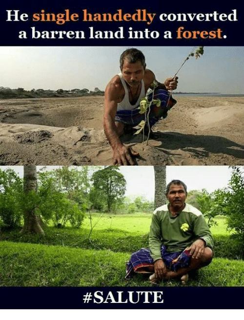 barren: He single handedly converted  a barren land into a forest.
