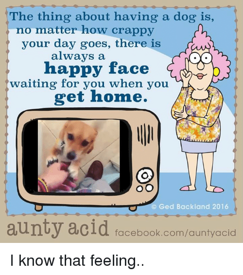 happy face: he thing about having a dog is,  no matter how crappy  your day goes, there is  always a  happy face  G  waiting for you when you  get home.  (C) Ged Backland 2016  aunty acid  facebook.com/auntyacid I know that feeling..