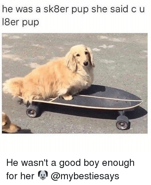 Good, Girl Memes, and Pup: he was a sk8er pup she said c u  18er pup He wasn't a good boy enough for her 🐶 @mybestiesays