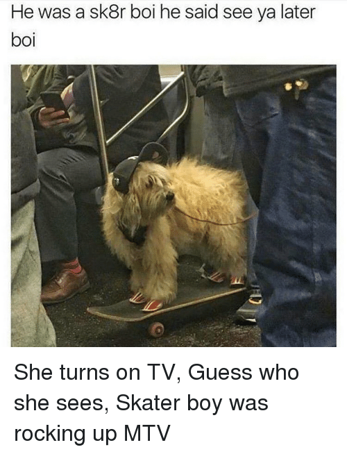 see-ya: He was a sk8r boi he said see ya later  boi She turns on TV, Guess who she sees, Skater boy was rocking up MTV