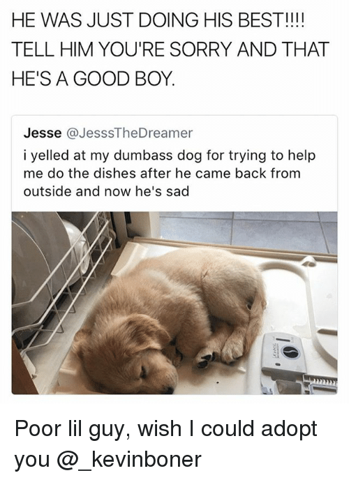 dogging: HE WAS JUST DOING HIS BEST!!!  TELL HIM YOU'RE SORRY AND THAT  HE'S A GOOD BOY.  Jesse @JesssTheDreamer  i yelled at my dumbass dog for trying to help  me do the dishes after he came back from  outside and now he's sad Poor lil guy, wish I could adopt you @_kevinboner