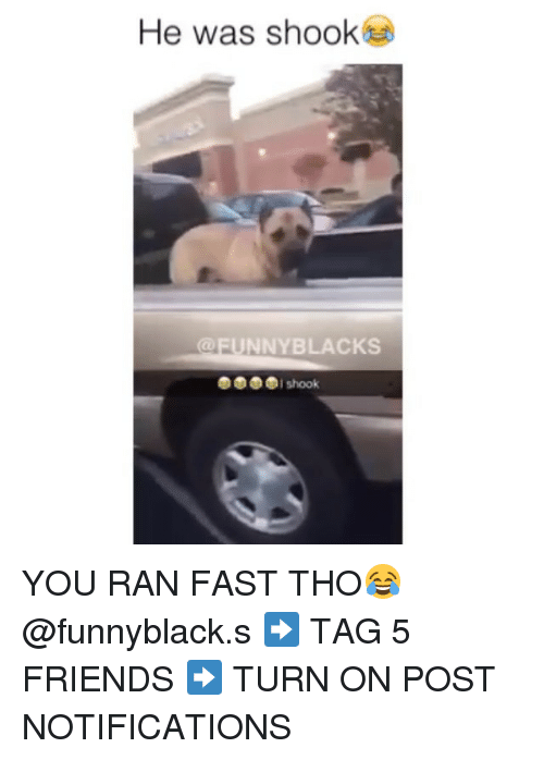 Unnie: He was shook  UNNY BLACKS  I shook YOU RAN FAST THO😂 @funnyblack.s ➡️ TAG 5 FRIENDS ➡️ TURN ON POST NOTIFICATIONS