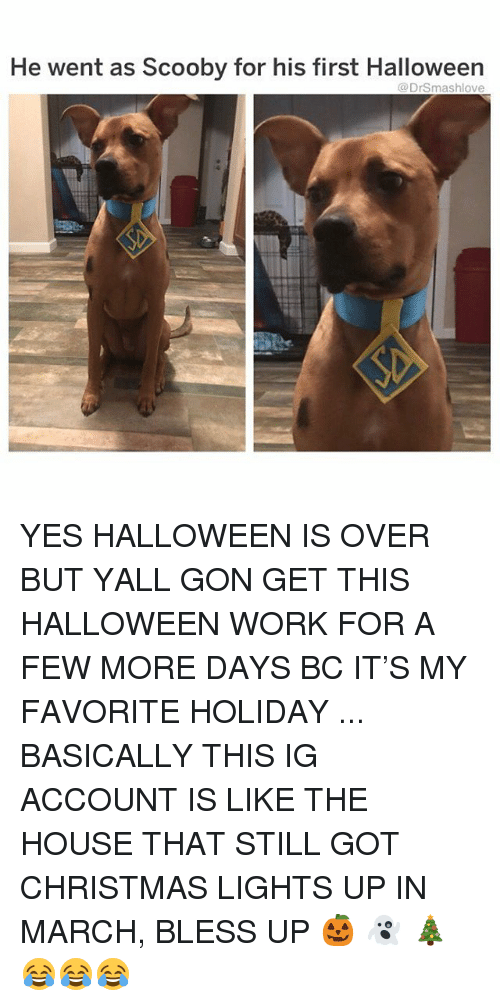 Bless Up, Christmas, and Halloween: He went as Scooby for his first Halloween  @DrSmashlove YES HALLOWEEN IS OVER BUT YALL GON GET THIS HALLOWEEN WORK FOR A FEW MORE DAYS BC IT'S MY FAVORITE HOLIDAY ... BASICALLY THIS IG ACCOUNT IS LIKE THE HOUSE THAT STILL GOT CHRISTMAS LIGHTS UP IN MARCH, BLESS UP 🎃 👻 🎄😂😂😂