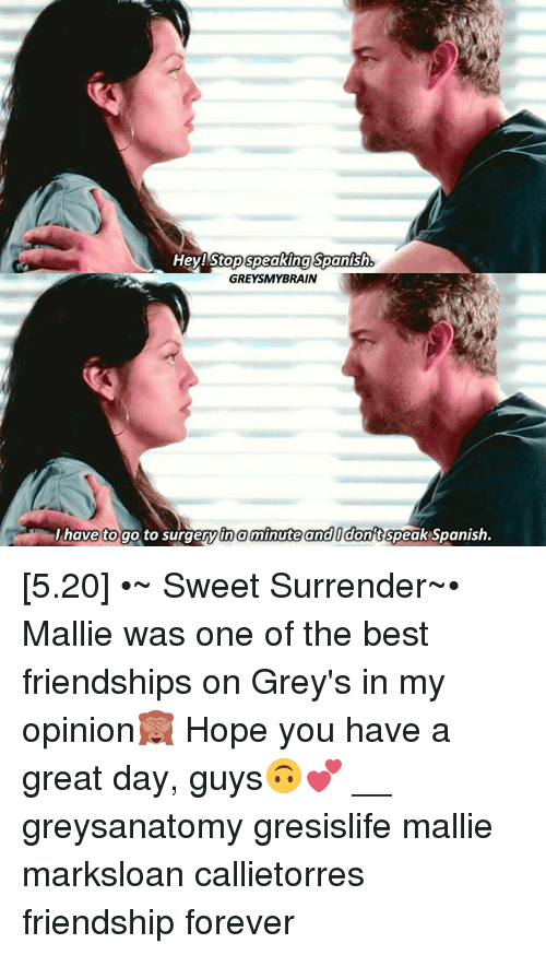 tna: He  y!Stop speaking Spanish  GREYSMYBRAIN  I have to go to surgery tna minute and Idont speak Spanish. [5.20] •~ Sweet Surrender~• Mallie was one of the best friendships on Grey's in my opinion🙈 Hope you have a great day, guys🙃💕 __ greysanatomy gresislife mallie marksloan callietorres friendship forever