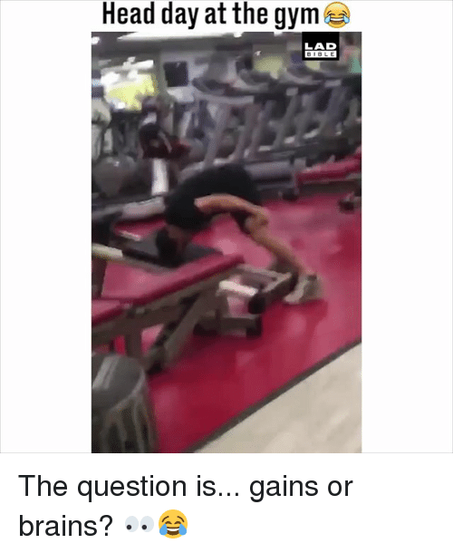 Brains, Gym, and Head: Head day at the gym  LAD  BIBLE The question is... gains or brains? 👀😂