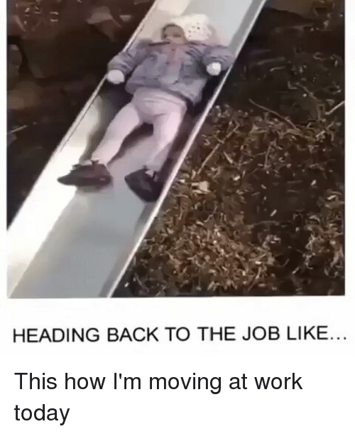 Memes, 🤖, and The Job: HEADING BACK TO THE JOB LIKE. This how I'm moving at work today