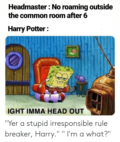 "Rule Breaker: Headmaster: No roaming outside  the common room after 6  Harry Potter  IGHT IMMA HEAD OUT ""Yer a stupid irresponsible rule breaker, Harry."" "" I'm a what?"""