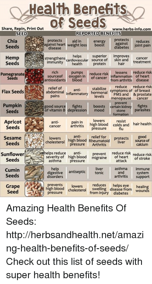 25+ Best Memes About Chia Seeds