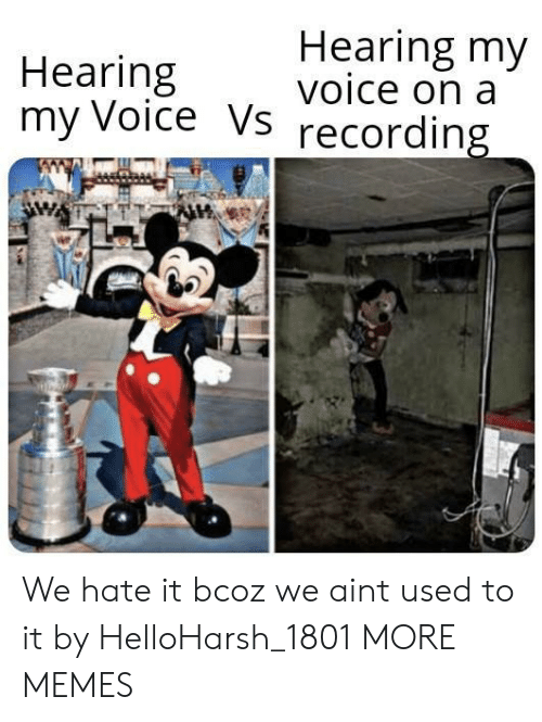 We Hate: Hearing my  voice on a  Hearing  my Voice Vs  recording We hate it bcoz we aint used to it by HelloHarsh_1801 MORE MEMES