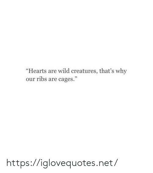 """ribs: """"Hearts are wild creatures, that's why  our ribs are cages."""" https://iglovequotes.net/"""