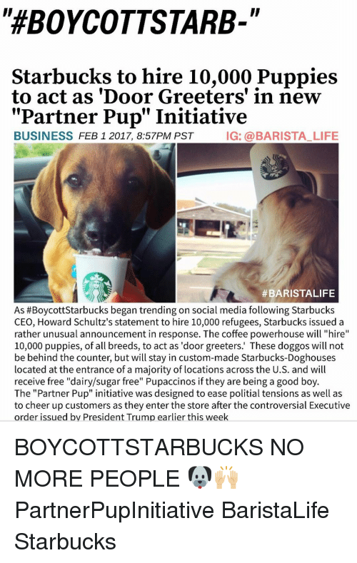 "Barista, Controversial, and Pup: ""HEBOYCOTTSTARB-  Starbucks to hire 10,000 Puppies  to act as 'Door Greeters' in new  Partner Pup"" Initiative  BUSINESS  FEB 1 2017, 8:57PM PST  IG: a BARISTA LIFE  #BARISTALIFE  As #Boycott Starbucks began trending on social media following Starbucks  CEO, Howard Schultz's statement to hire 10,000 refugees, Starbucks issued a  rather unusual announcement in response. The coffee powerhouse will ""hire  10,000 puppies, of all breeds, to act as 'door greeters.' These doggos will not  be behind the counter, but will stay in custom-made Starbucks-Doghouses  located at the entrance of a majority of locations across the U.S. and will  receive free ""dairy/sugar free"" Pupaccinos if they are being a good boy  The ""Partner Pup"" initiative was designed to ease politial tensions as well as  to cheer up customers as they enter the store after the controversial Executive  order issued by President Trump earlier this week BOYCOTTSTARBUCKS NO MORE PEOPLE 🐶🙌🏼 PartnerPupInitiative BaristaLife Starbucks"