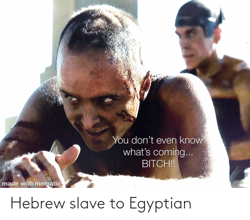Egyptian: Hebrew slave to Egyptian