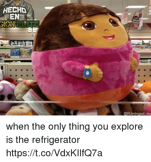 Funny, Refrigerator, and Thing: HECHD  EN  ION  ELI  @ElJeringasLoko when the only thing you explore is the refrigerator https://t.co/VdxKIlfQ7a