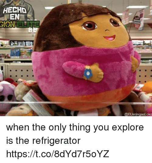 Refrigerator, Girl Memes, and Thing: HECHD  EN  ION ENIna  @ElJeringasLoko when the only thing you explore is the refrigerator https://t.co/8dYd7r5oYZ