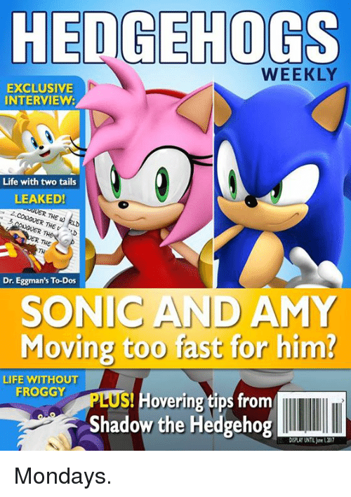 shadow the hedgehog: HEDGEHOGS  WEEKLY  EXCLUSIVE  INTERVIEW:  Life with two tails  LEAKED!  UNGVER THE w  ONGUER TH  Dr. Eggman's To-Dos  SONIC AND AMY  Moving too fast for him?  LIFE WITHOUT  FROGGY  S overing tips from  Shadow the Hedgehog  DISPLAY UNTIL L211 Mondays.