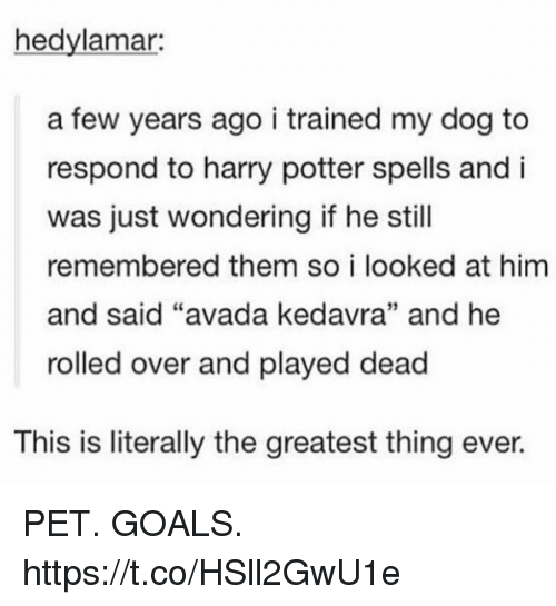 "Goals, Harry Potter, and Avada Kedavra: hedylamar:  a few years ago i trained my dog to  respond to harry potter spells and i  was just wondering if he still  remembered them so i looked at him  and said ""avada kedavra"" and he  rolled over and played dead  L0  35  This is literally the greatest thing ever. PET. GOALS. https://t.co/HSll2GwU1e"