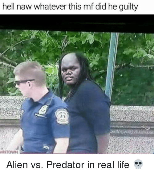Life, Memes, and Alien: hell naw whatever this mf didhe guilty  WNTOWN Alien vs. Predator in real life 💀