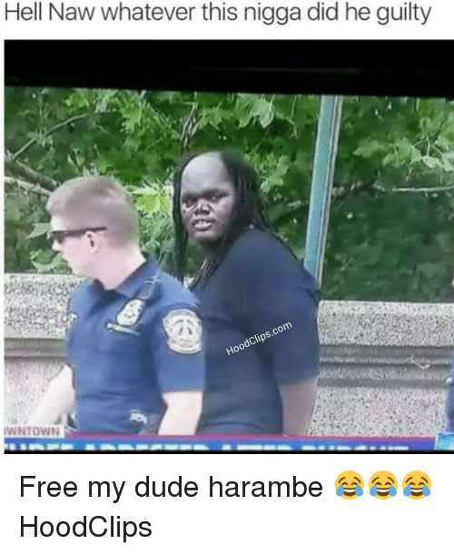 Dude, Funny, and Free: Hell Naw whatever this nigga did he guilty  Clips.com  Hood IWNTOWN Free my dude harambe 😂😂😂 HoodClips