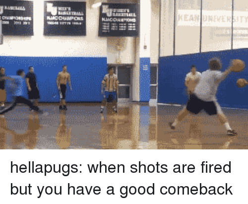 Good Comeback: hellapugs: when shots are fired but you have a good comeback