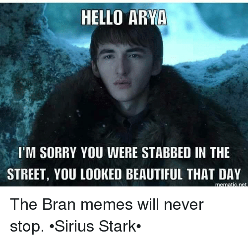 Beautiful, Hello, and Memes: HELLO ARYA  I'M SORRY YOU WERE STABBED IN THE  STREET, YOU LOOKED BEAUTIFUL THAT DAY  mematic.net The Bran memes will never stop. •Sirius Stark•