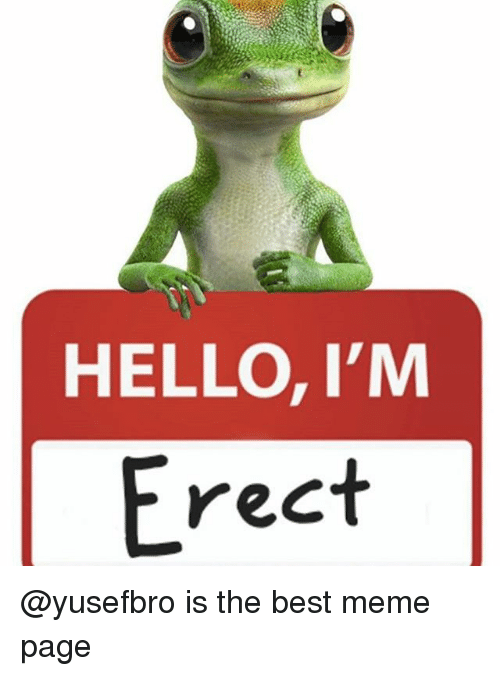 Funniest Meme Pages : Hello i m erect is the best meme page on sizzle