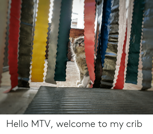 Welcome To My Crib: Hello MTV, welcome to my crib