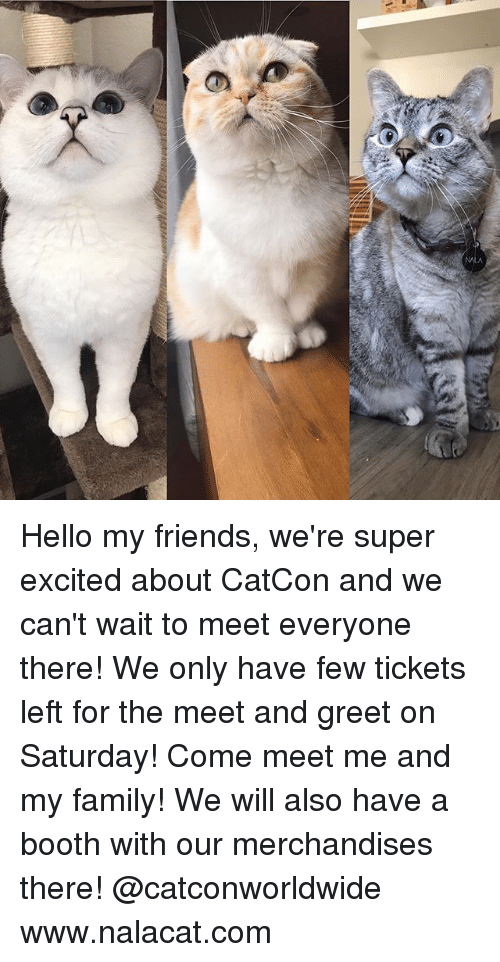 Family, Friends, and Hello: Hello my friends, we're super excited about CatCon and we can't wait to meet everyone there! We only have few tickets left for the meet and greet on Saturday! Come meet me and my family! We will also have a booth with our merchandises there! @catconworldwide www.nalacat.com