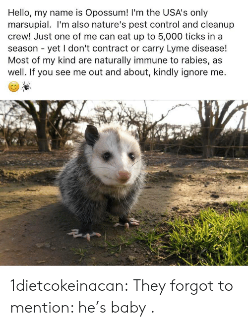 pest: Hello, my name is Opossum! 'm the USA's only  marsupial. I'm also nature's pest control and cleanup  crew! Just one of me can eat up to 5,000 ticks in a  season - yet I don't contract or carry Lyme disease!  Most of my kind are naturally immune to rabies, as  well. If you see me out and about, kindly ignore me 1dietcokeinacan: They forgot to mention: he's baby .