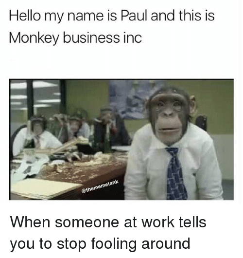 Hello My Name Is Paul and This Is Monkey Business Inc ...
