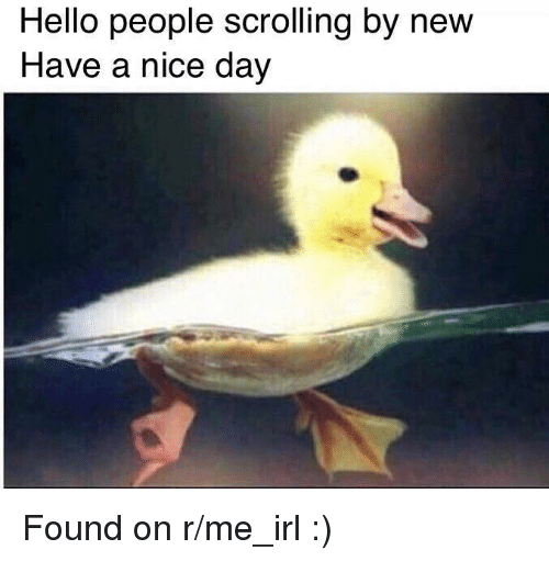 R Me Irl: Hello people scrolling by new  Have a nice day  2 Found on r/me_irl :)