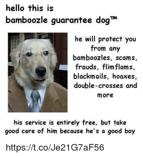 hello this is bamboozle guarantee dog he will protect you