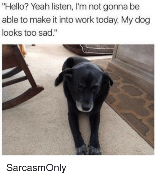 """Funny, Hello, and Memes: """"Hello? Yeah listen, I'm not gonna be  able to make it into work today. My dog  looks too sad."""" SarcasmOnly"""