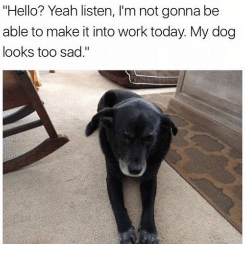 """Dank, Hello, and Yeah: """"Hello? Yeah listen, I'm not gonna be  able to make it into work today. My dog  looks too sad."""""""