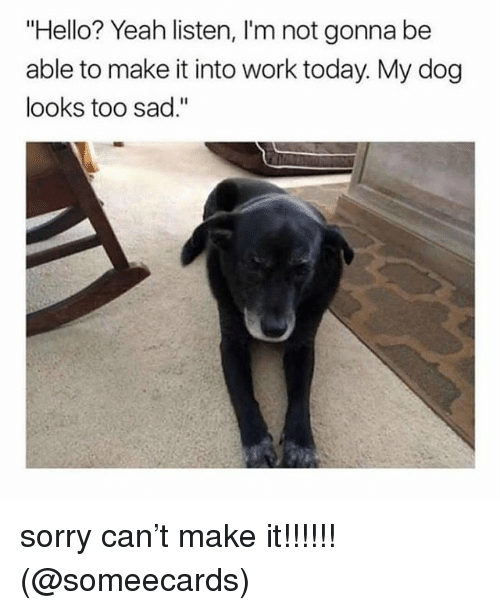 """Hello, Memes, and Sorry: """"Hello? Yeah listen, I'm not gonna be  able to make it into work today. My dog  looks too sad."""" sorry can't make it!!!!!! (@someecards)"""