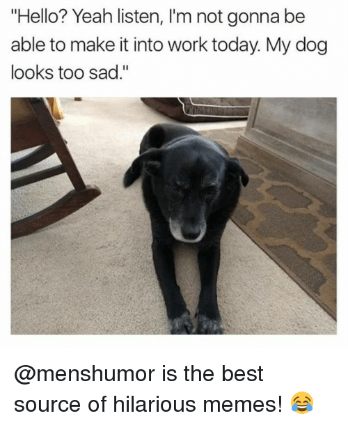 "Funny, Hello, and Memes: ""Hello? Yeah listen, l'm not gonna be  able to make it into work today My dog  looks too sad."" @menshumor is the best source of hilarious memes! 😂"