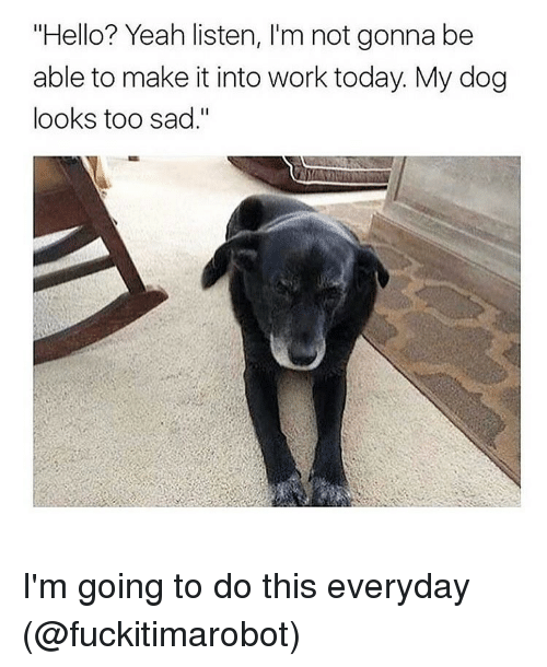 "Funny, Hello, and Girl Memes: ""Hello? Yeah listen, l'm not gonna be  able to make it into work today My dog  looks too sad."" I'm going to do this everyday (@fuckitimarobot)"