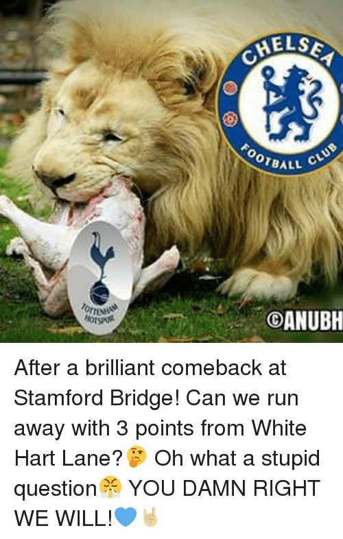 stupid questions: HELSE  ore ALL  COANUBH After a brilliant comeback at Stamford Bridge! Can we run away with 3 points from White Hart Lane?🤔 Oh what a stupid question😤 YOU DAMN RIGHT WE WILL!💙🤘🏼